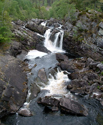 Rogie Falls On The River Blackwater