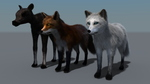 Foxes and Moose Calf LAMH Catalyzer