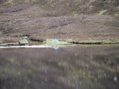 Flat Calm on Fiddle Loch And Fish Rising