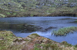 No Name Hill Loch, Moidart. Possibly Lower Lochan Sligeanach